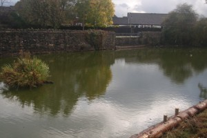 Find out more about medieval moat at Barrs Court