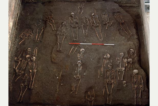 medieval-skeletons