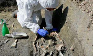 skeleton in Italy